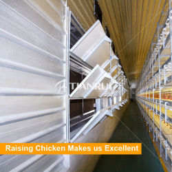 Яйцо куриное дом управление климатом в конструкции системы для слоев