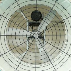 Zentrifugaler Gebläse-Stall-Dach-Luftauslass-schwanzloser Kasten-Ventilator