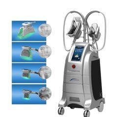 Cer-Zustimmung Cryolipolysis dünne Maschine mit 4 Griffen, welche die fette Zelle abnimmt Cryo Maschine einfrieren