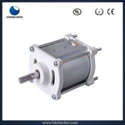 12V/24V pour petit moteur électrique PMDC Power Tool