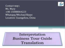 Geschäfts-Übersetzungs-Deutung