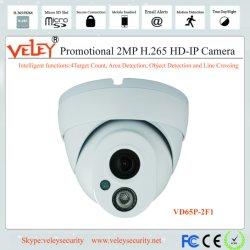Indoor 10-20m sans fil WiFi Caméra IP caméra miniature Web Cam