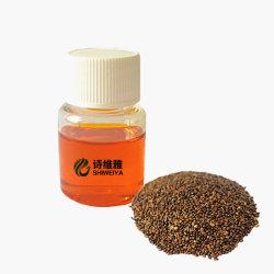 Fornitura di fabbrica 100% di puro olio di semi di fibbuglio di mare naturale