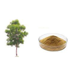 Qualidade Ecológica Inseticida Nim azadiractina