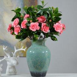 품목 기술 플라스틱 꽃이 주문 대중적인 동백나무 홈 훈장에 의하여 꽃이 핀다