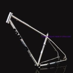 Blocco per grafici caldo della bicicletta di vendita per la bici di montagna fatta in Cina