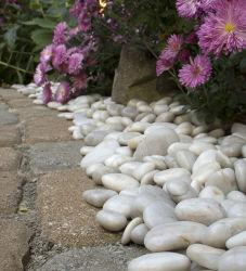 Naural de guijarros blancos para la jardinería y plantas