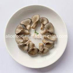 最もよい品質軽食によって水分を取り除かれる様式の真空によって揚げられているカキきのこ