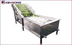 Industrieel Automatisch Fruit en de Plantaardige Schoonmakende Machine van de Was van de Wasmachine van het Voedsel