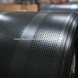 Перфорированной металлической сетки из нержавеющей стали микропористый гравирования сетка для фильтрации/зернового решета