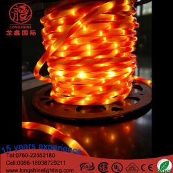 Het LEIDENE Tweekleurige Licht van de Kabel met 2 Draden voor de Decoratie van de Vakantie