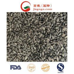 Les graines de tournesol de Haute Qualité Qualité d'huile