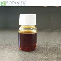 ベストセラー品質のローズマリーのRosmarinusのOfficinalisのすべての自然なエキスは、溶けるローズマリーの酸化防止剤5% Carnosicの酸に油をさす