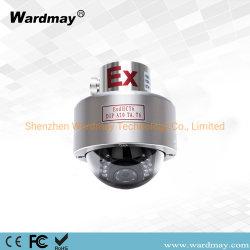 En acier inoxydable 304/316 Station à gaz marines de l'huile mini dôme Explosion-Proof Caméra IP infrarouge