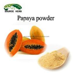 Natuurlijke Organische Nevel - het droge Poeder van het Fruit van de Papaja van het Poeder van de Papaja