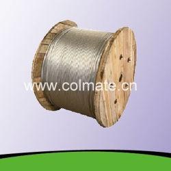 O fio de aço inoxidável galvanizado / Guy / estadia no fio do fio