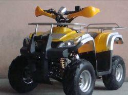 Nuevo diseño del cuerpo 110cc Ce aprobada Racing Quad et-ATV005)