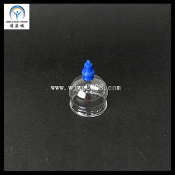Akupunktur des Vakuumglas-höhlende Set-(5 Cup)