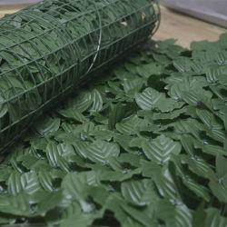 مصنع البطاطس الحلو الأخضر يترك سياج عشبى للجدار ديكور الجدار