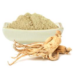 El polvo a granel en polvo Extracto de Raíz de Panax ginseng ingrediente para la salud