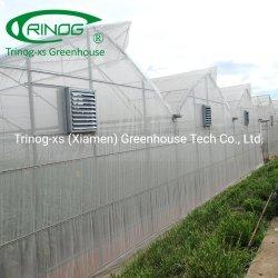 بنية نفق عالية مواد منزل خضراء للمزرعة التجارية