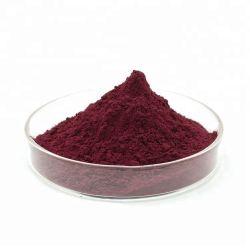 Soluble en agua presente en polvo extracto de té negro de Ceilán