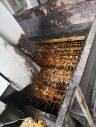 Resíduos de cozinha, o óleo usado de equipamentos de processamento para produzir gás de cozinha, adubo orgânico, biodiesel, o GNC GNL; Ect Óleo Vegetal Equipamentos/Máquina/Maquinaria