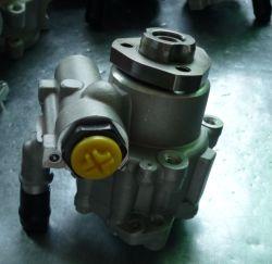 Delen van de Auto van de Toebehoren van de Vervangstukken van de hydraulische Pomp de Auto voor Jetta/Polo/Derby/Abv/Golf III/Vento (6N0422155E)