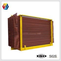 SGSの証明書が付いている産業発電所のための石炭または生物量のEconのエコノマイザのボイラーアクセサリ