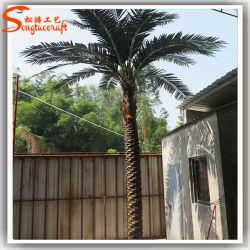 Immergrünes dekoratives Plastikfiberglas-künstliche Palme