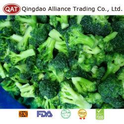 Hochwertiger gefrorener IQF Schnitt-Brokkoli