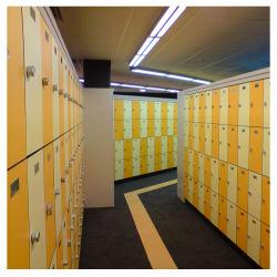 À prova de moderno Ginásio Sauna cacifo HPL compacto