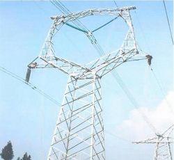 El enrejado galvanizado de alta calidad de la torre de acero ángulo