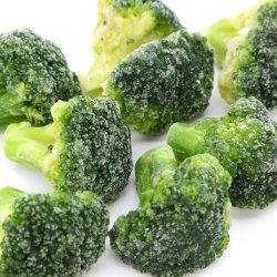 Завод, Шаньдун Fangxin продовольствия, IQF замороженных брокколи, Floret 3-5см и 4-6см, замороженных овощей, замороженные продукты