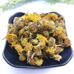 Xuan Fu Hua Chinese Convolvulus Herbaltea Healthy Tea Inula Flower