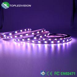 Lampada a fune LED a colori RGBW SMD5050 di qualità 60LEDs 19W/M.