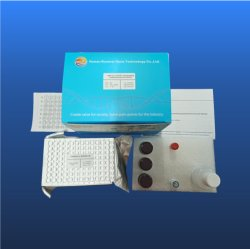 Antivirenneutralisierungs-Elisa-Detektions-Kits, CE-zugelassenes Neutralisierungs-Elisa-Kit