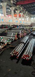 Gcr15/SUJ2/100cr6/52100/EN31 Lagerstahl warmgewalzter Stahl Rundstab