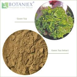 La parte superior de mejor venta de té negro chino de hierbas teaflavinas extrae un 10%-60%