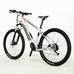 Cadre en alliage de15194 certificat CE fr 26 pouces 26V 350W plusieurs vitesses vélo électrique E-Bike OEM avec frein à disque double Ebike