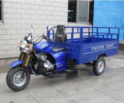 150cc Lifan 200cc груза инвалидных колясках мото инвалидных колясках педаль заднего хода инвалидных колясках(СИ150ZH-B1)