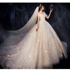 Kundenspezifische Brautkleid-Kleid-Hüllen-Isolationsschlauch-Spitze-Hochzeits-Kleider 2020
