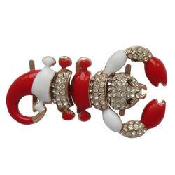 De mooie Ornamenten van de Schoenen van het Zink van het Ontwerp Materiële, de Decoratie van de Gesp van het Metaal