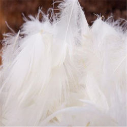 白塗りのマテリアルを使用した羽毛布団 2-4 cm