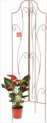 プラント(XY14010)のための園芸の花の鉄ワイヤートレリスのための金属のトレリス