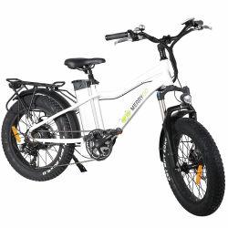 bici elettrica dell'azionamento della parte posteriore di stile della montagna 20inch con la batteria di litio