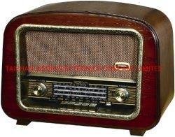 FM/SW2/SW1/MW Retro Fonction radio USB/SD