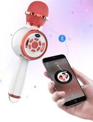 مكبر صوت مكبر الصوت المحمول بتقنية Bluetooth® من Ds810 Professional USB Wireless المكثف