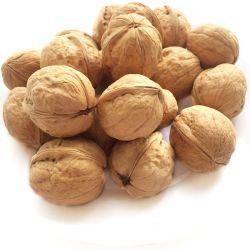 Sacchetto sottile Shell Fresh Delicious Nutrition Chinese Walnut kernel Max Confezione da imballaggio fresco AAA Bulk Style
