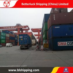 Servicio de Logística de China a Greenville, Carolina del Sur/Freight Forwarder Gastos de envío